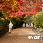 japan-photo-guide-391