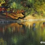 Japan Photo Guide Fall-009