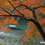 Japan Photo Guide Fall-024