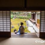 Maiko Portrait Session-04-japanphotoguide