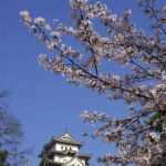 Himeji-01-japanphotoguide