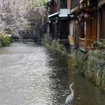 Kyoto-22-japanphotoguide