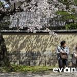 Kyoto-26-japanphotoguide
