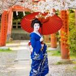 123-Kyoto-Geiko-Portrait-Cherry-Blossom