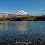136-Mt-Fuji-Cherry-Blossom
