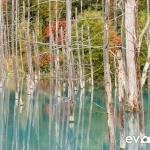 blue-pond-002