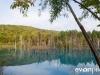 blue-pond-008