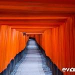 fushimi-inari-shrine-001