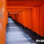 fushimi-inari-shrine-002