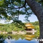 golden-pavilion-002