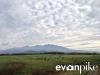 kamikawa-angus-farm-005