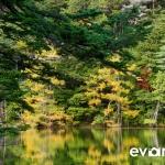 Myojin Pond-JapanPhotoGuide-026