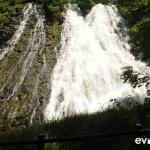 oshinkoshin-falls-004