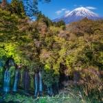 05-mt-fuji-japan-photo-guide-021