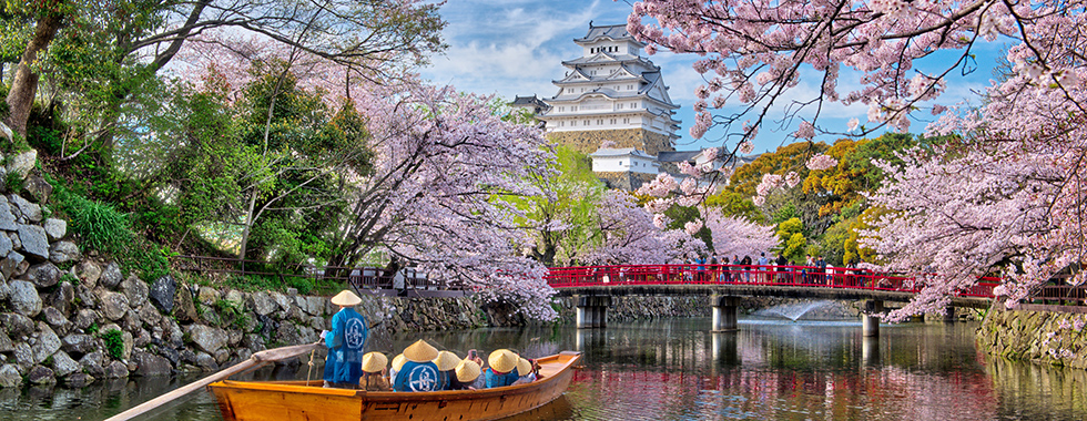 » 2018 Japan Cherry Blossom Photography Tour Japan Photo Guide